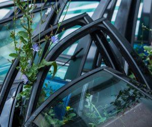 Ar automobilių ardytojai išlįs iš šešėlio?