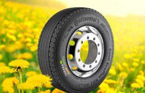 """""""Continental"""" padangų gumos iš kiaulpienių gamyklos atidarymas – jau šiemet"""